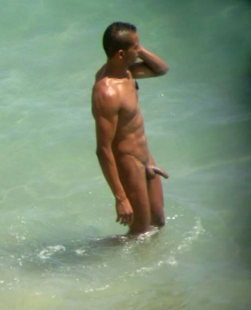 hidden cam nudist big cock sea
