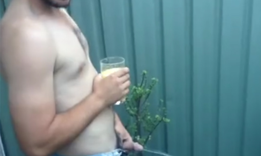 drunk guy pissing in yard